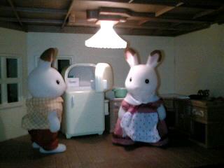 冷蔵庫(置いてみた)